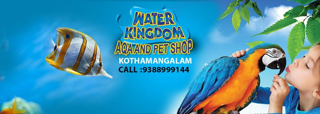 Water Kingdom Aqua and Pet Store Kothamangalam