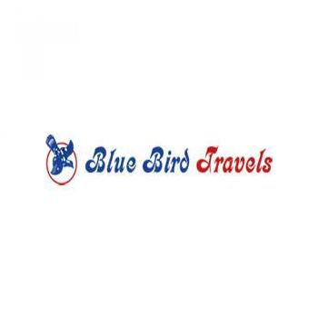 Blue Bird Travel in Ernakulam