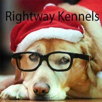 Rightway Kennels Pudukad in Thrissur