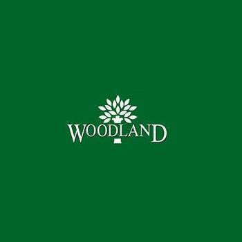Woodland in Vytilla, Ernakulam