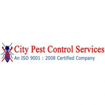 City Pest Control Services in Chennai