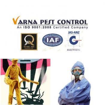 Varna Pest Control in Bengaluru, Bangalore
