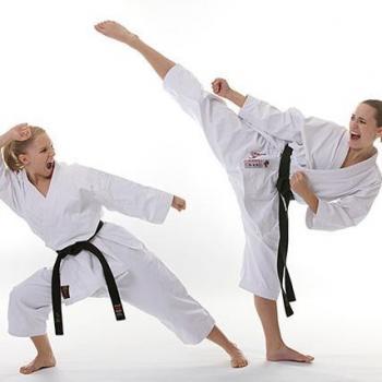 Nippon Shito-Ryu Karate School in Pukkattupady, Ernakulam