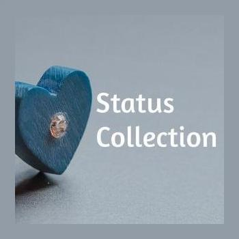 Status Collection in Ahmedabad