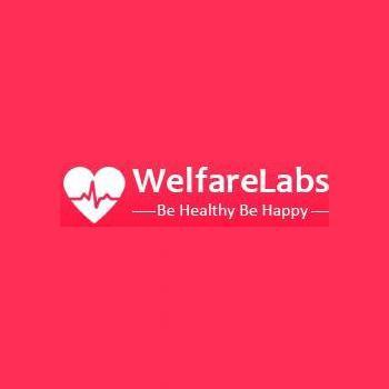 welfarelabs in Belapur