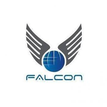 Falcon Freight PVT.LTD in Delhi