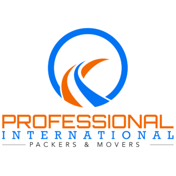 PROFESSIONAL INTERNATIONAL MOVERS in New Delhi