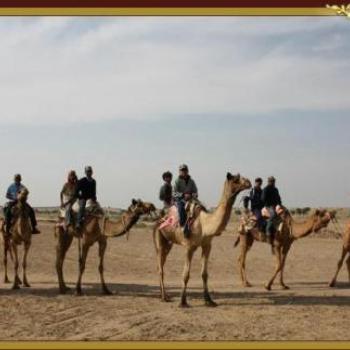 Osian Sand Dunes Resort and Camp in jodhpur, Jodhpur