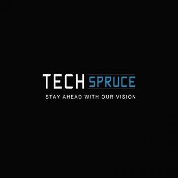 Tech Spruce IT Solutions in Mohali