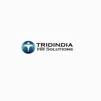 Tridindia HR Solutions