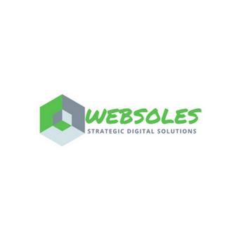 Websoles Strategic Digital Solutions Awarded Best Website Designing Company in Delhi India in Delhi