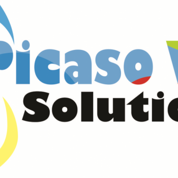 Picaso Web Solutions in Muzaffarpur