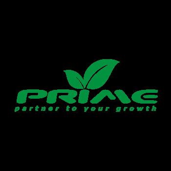 Prime Infoserv LLP