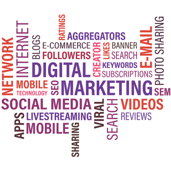 Web Portal India Digital Marketing Company in Noida, Gautam Buddha Nagar