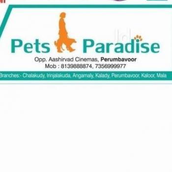 Paradise Pets in Angamaly, Ernakulam