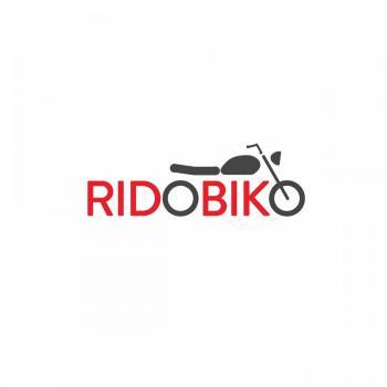 Ridobiko in Delhi