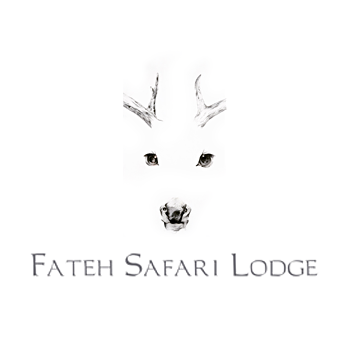 Fateh Safari Lodge in Rajsamand