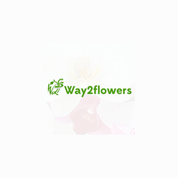 Way2flowers in Zirakpur, Sahibzada Ajit Singh Nagar