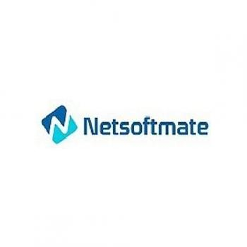 Netsoftmate IT Solutions Private Limited in Hyderabad