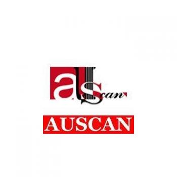 Auscan Consultants India Ltd