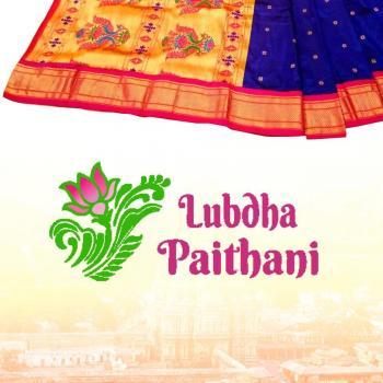 Lubdha Paithani in Mumbai, Mumbai City