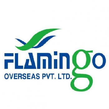 Flamingo Overseas Pvt Ltd in Rajkot