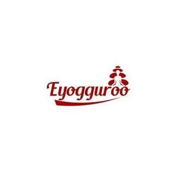 EyogGuroo in Gurgaon, Gurugram