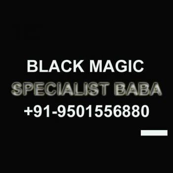 Astrologer in Amritsar