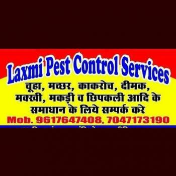 Laxmi Pest Control Servics in Jabalpur