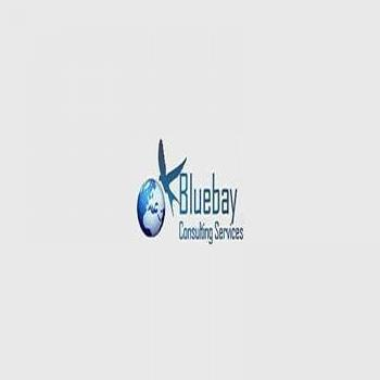 Bluebay Consulting in Bangalore