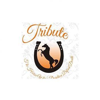 Tribute Restaurant in Udaipur
