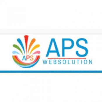 APS Web solution in Kolkata