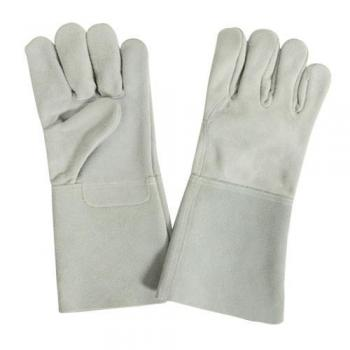 Hand Gloves in Vellore