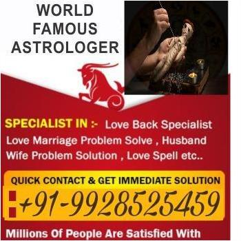 astrologers in Jaipur