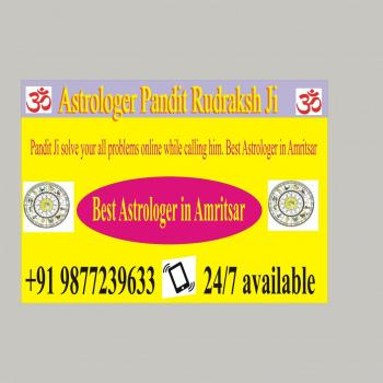 Best Astrologer in India Pandit Rudraksh Ji Best Astrologer in Amritsar in Amritsar