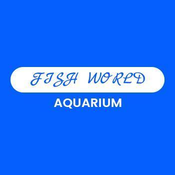 Fish World Aquarium & Pets in Attingal, Thiruvananthapuram