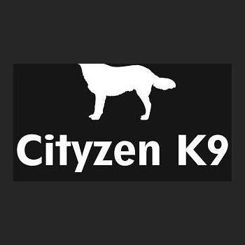 Cityzen K9 Dog Training & Hostel in Gaya