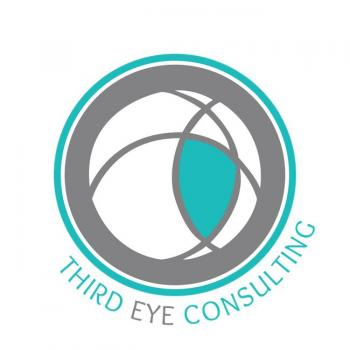 ThirdEye Consulting in Mumbai, Mumbai City