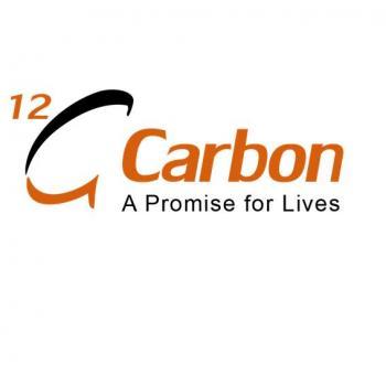 12C Carbon industries