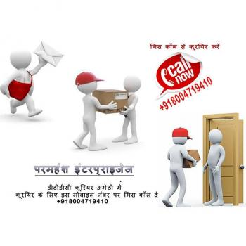 DTDC COURIER SERVICE AMETHISULTANPUR