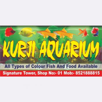 Kurji Aquarium Shop in Patna