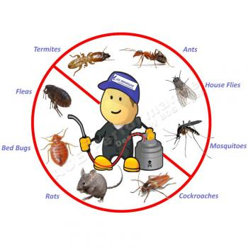 Termite Mosquito Cockroach Pest Control Services in Bhagalpur