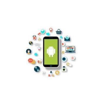 netpanacea software and digital marketing in Chandigarh