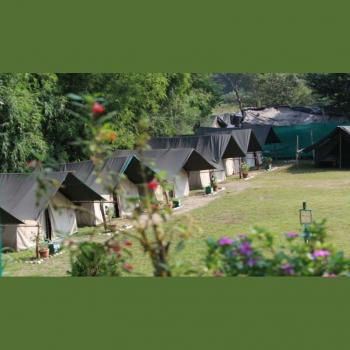 Himalaya Nature Camp  Camping in Rishikesh in Rishikesh, Dehradun
