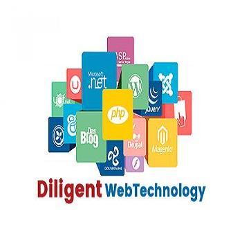 Diligent Web Technology in Loni, Ghaziabad
