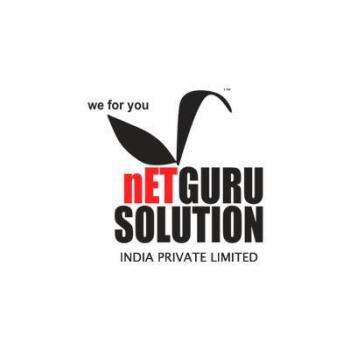 Netguru Solution India Pvt Ltd in Pune