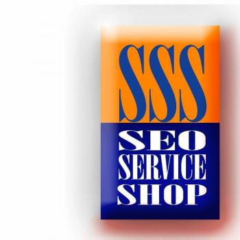Seoserviceshop Web Solution Agency & Seo Services in Chandigarh