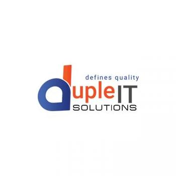 Duple IT Solutions in Ambala Cantt, Ambala