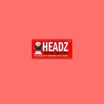 Headz Hair Fixing in Delhi