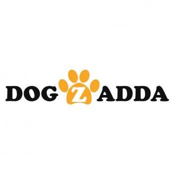 dogzadda in Hyderabad